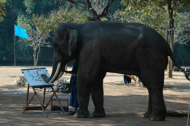 Painting Elephant - Lampang, Thailand