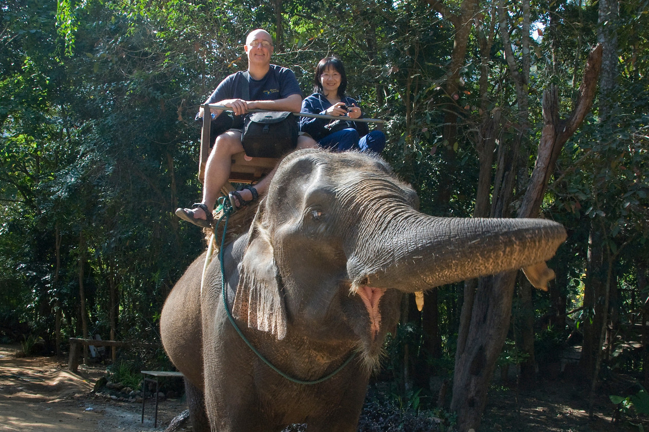 Riding the elephant at Chiang Mai, Thailand