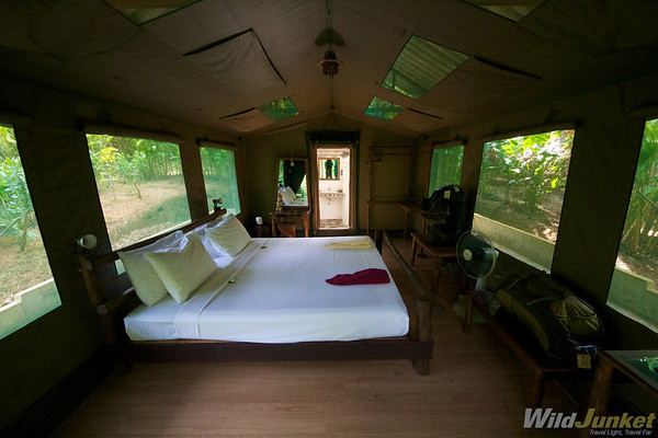 Luxury tent at Elephant Hills Camp