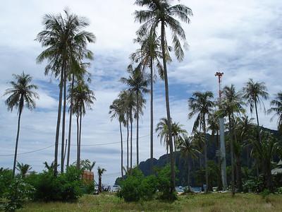 Tsunami Warning Tower, Koh Phi Phi Don - Thailand.