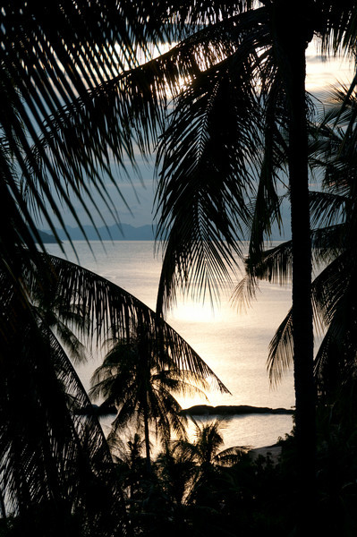Overlooking the sea at beautiful sunset in Ko Samui, Thailand