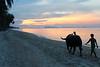 Thai Beach Buffalo