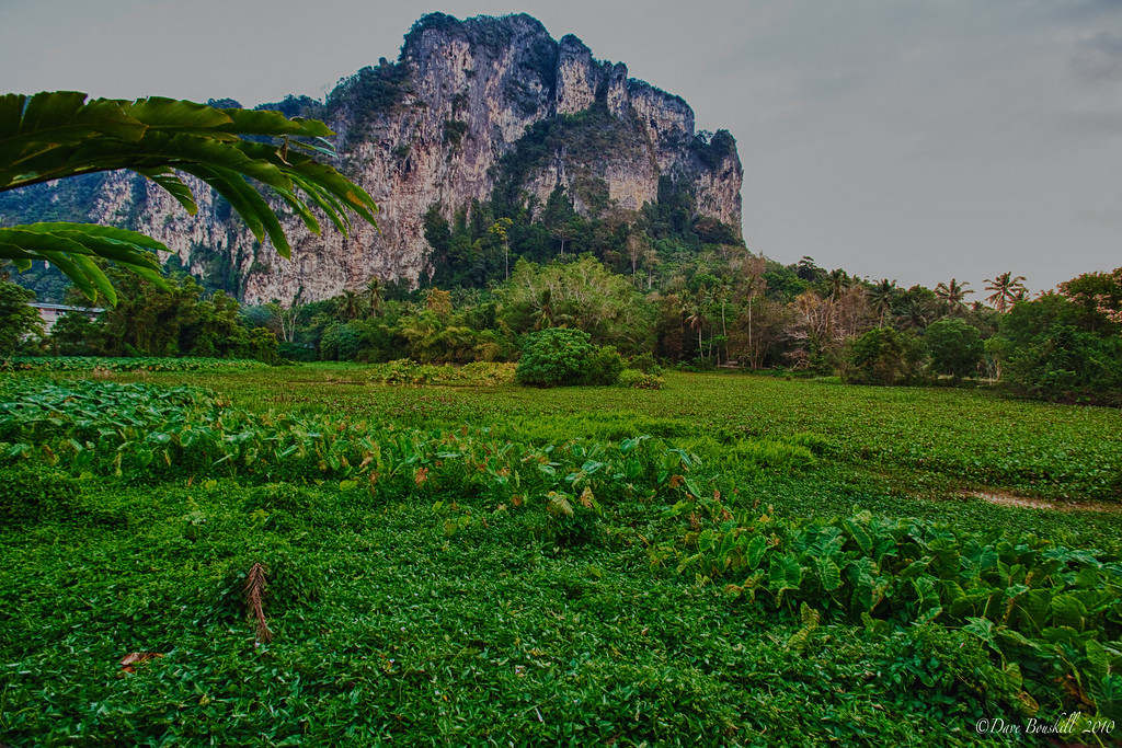 Rock-Climbing-Railay-Krabi-thailand-23