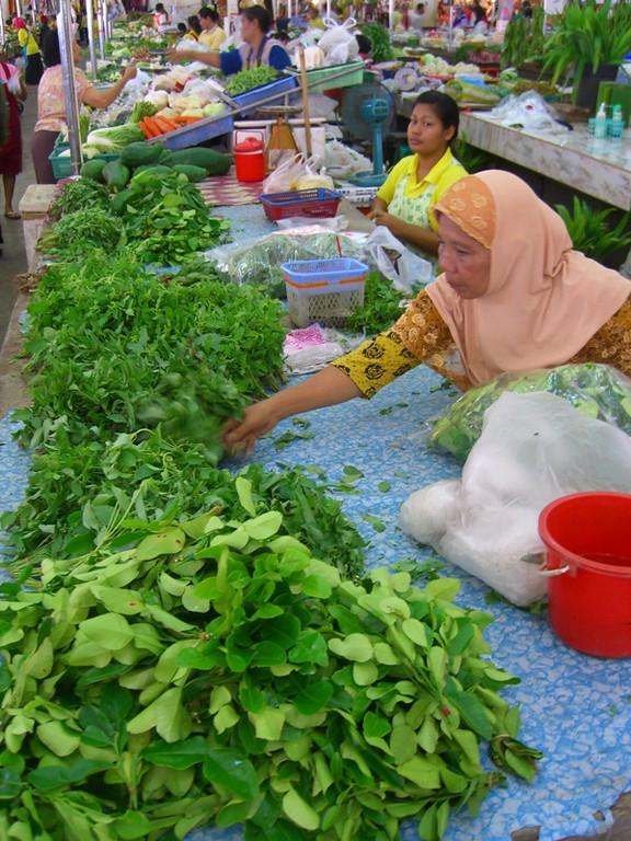 Greens Galore - Krabi, Thailand