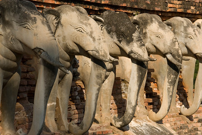 Closer shot of elephant carving on Wat Sorasak - Sukhothai, Thailand