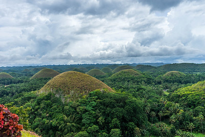 The famous Chocolate Hills
