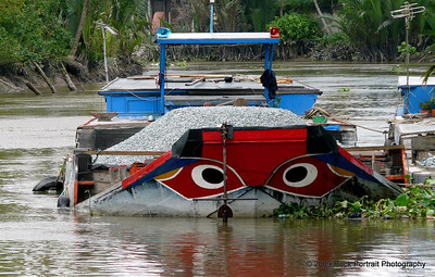 My last Mekong boat before I head back to Saigon. It watches me eat...