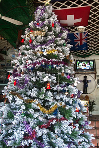 Christmas Tree in Ned Kelly's Bar