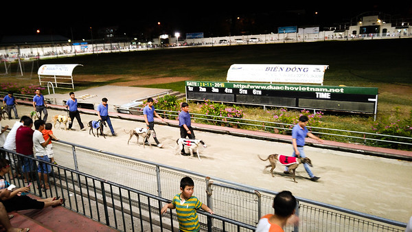 After the wedding we headed to the greyhounds at Lam Son Park