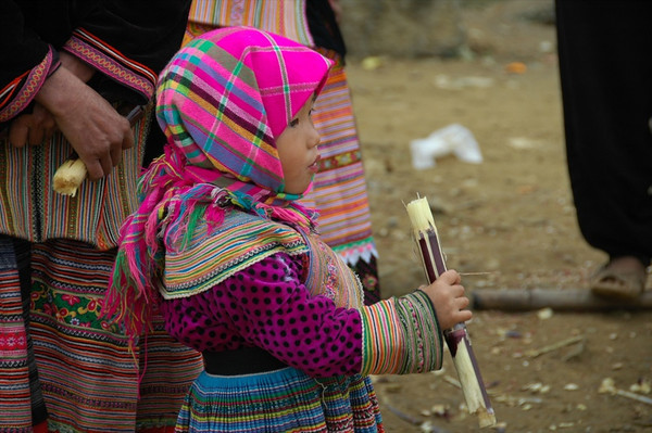 Sugar Cane Treat - Bac Ha, Vietnam