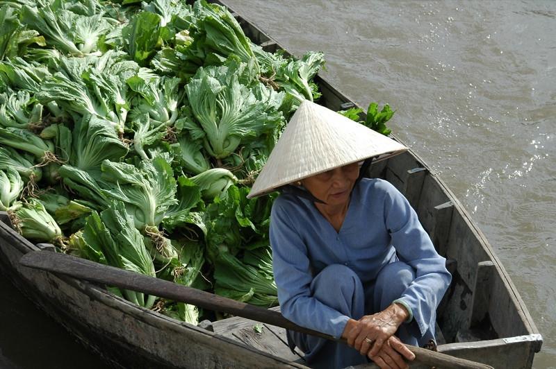 Greens on the Go - Mekong Delta, Vietnam