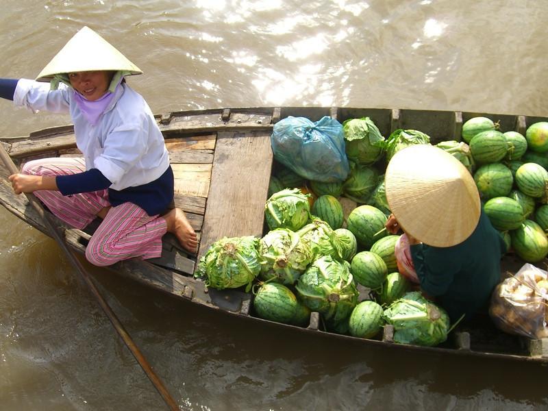 Cabbage and Watermelon - Mekong Delta, Vietnam