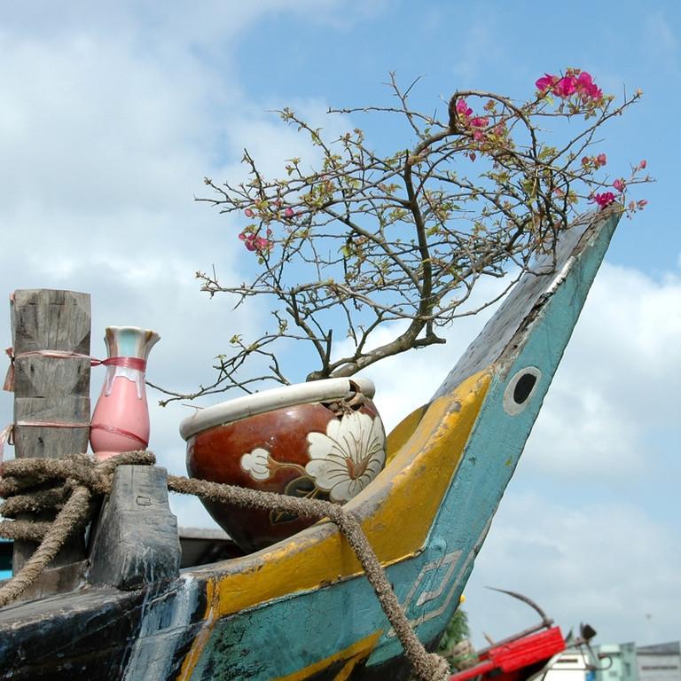 Flowery Bow - Mekong Delta, Vietnam