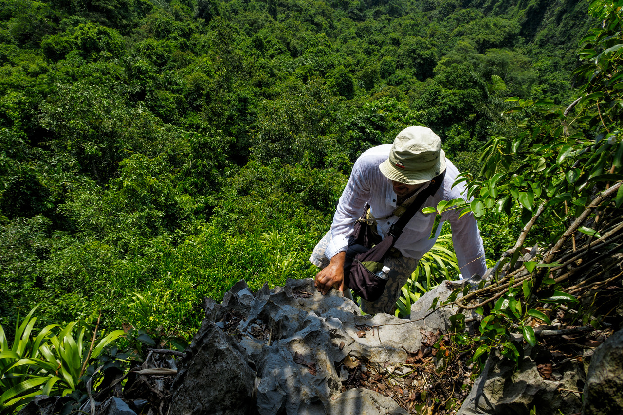 The Artist in action in the jungle of Cat Ba around Halong Bay. Thx Dang for that nice shot!
