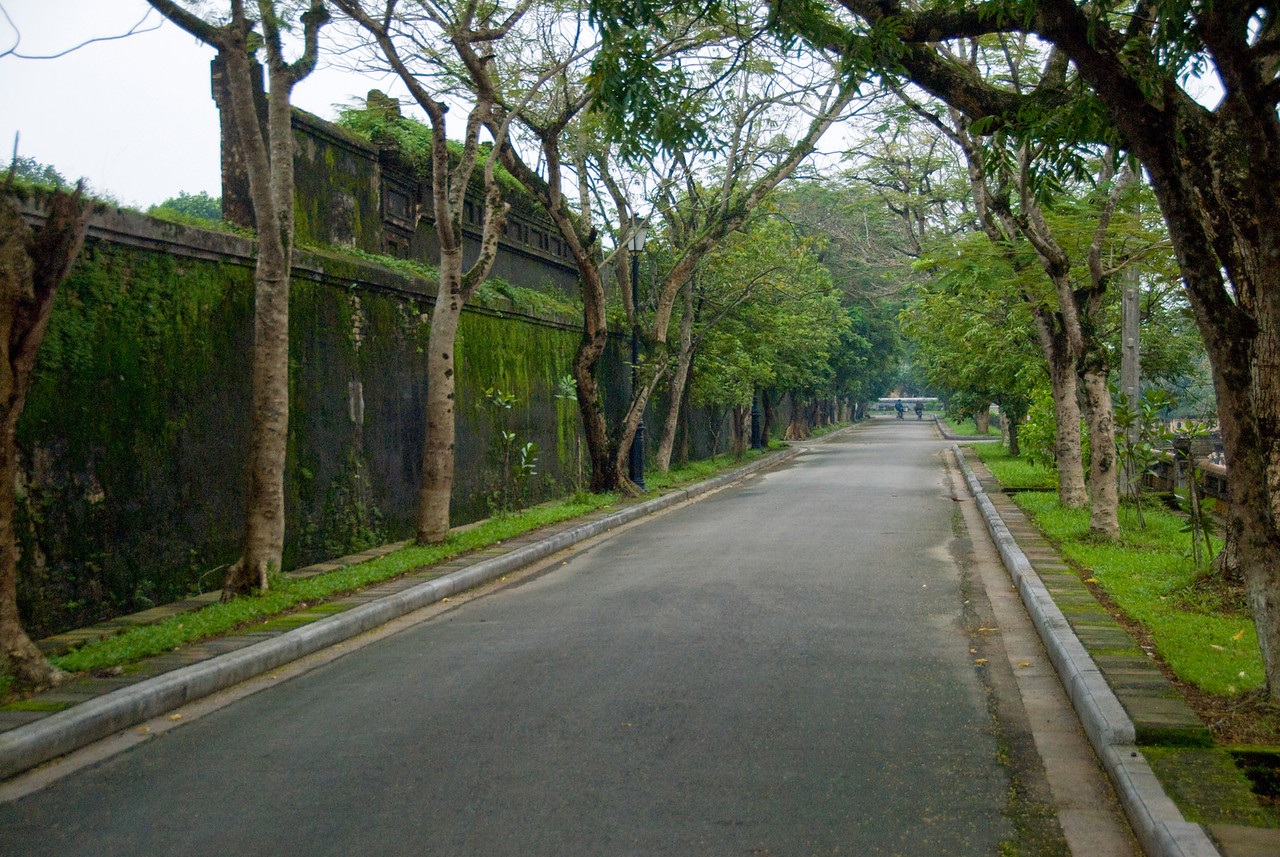 Tree-lined street in Hue, Vietnam