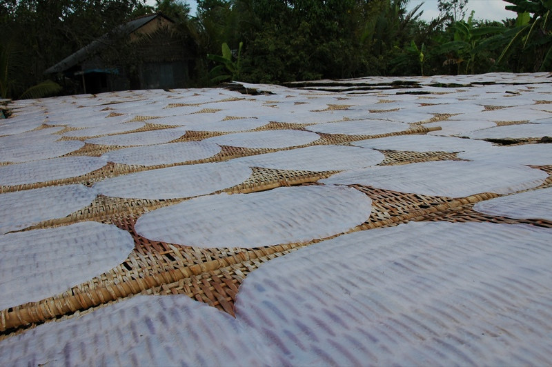 Rice Rounds - Mekong Delta, Vietnam