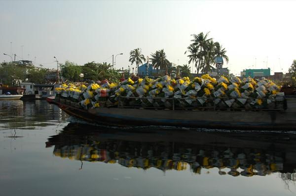 Flowers - Mekong Delta, Vietnam