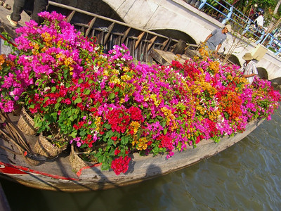 Bougainvillea Boat - Mekong Delta, Vietnam