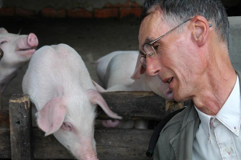 Man and Pig - Mekong Delta, Vietnam