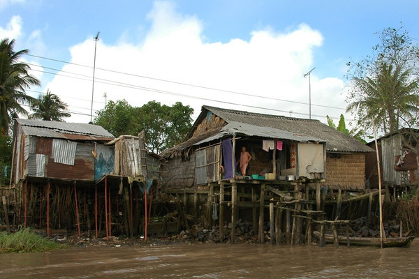 Houses Along the River - Mekong Delta, Vietnam
