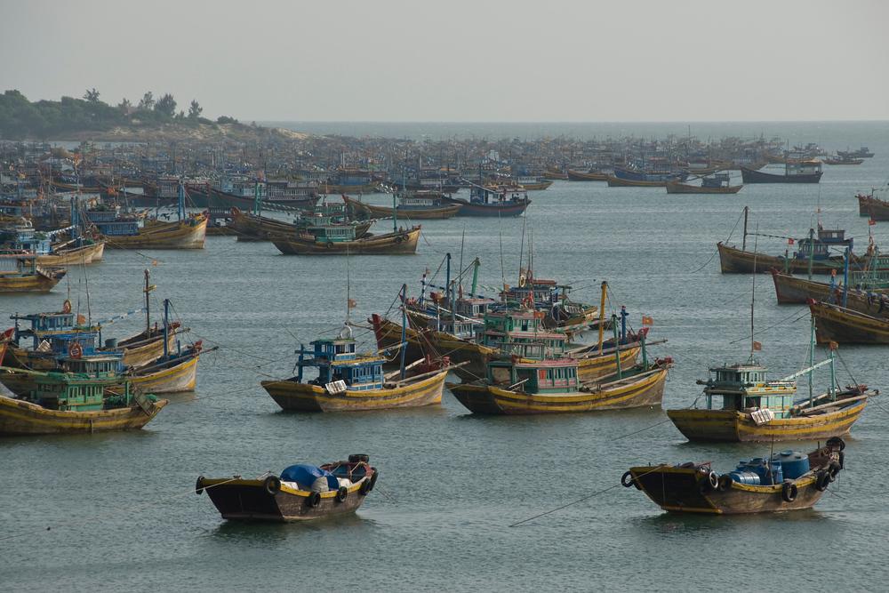 Fishing Fleet, Mui Ne, Vietnam