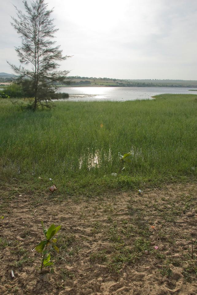Small swamp near the white sand dunes - Mui Ne, Vietnam