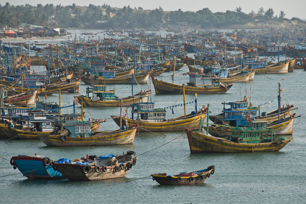 Fishing Fleet in Harbor - Mui Ne, Vietnam