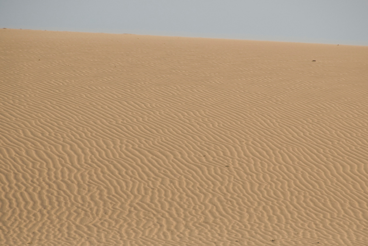 The serene white sand dunes in Mui Ne, Vietnam