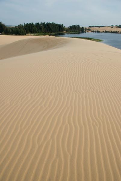 Wind marks at the white sand dunes - Mui Ne, Vietnam