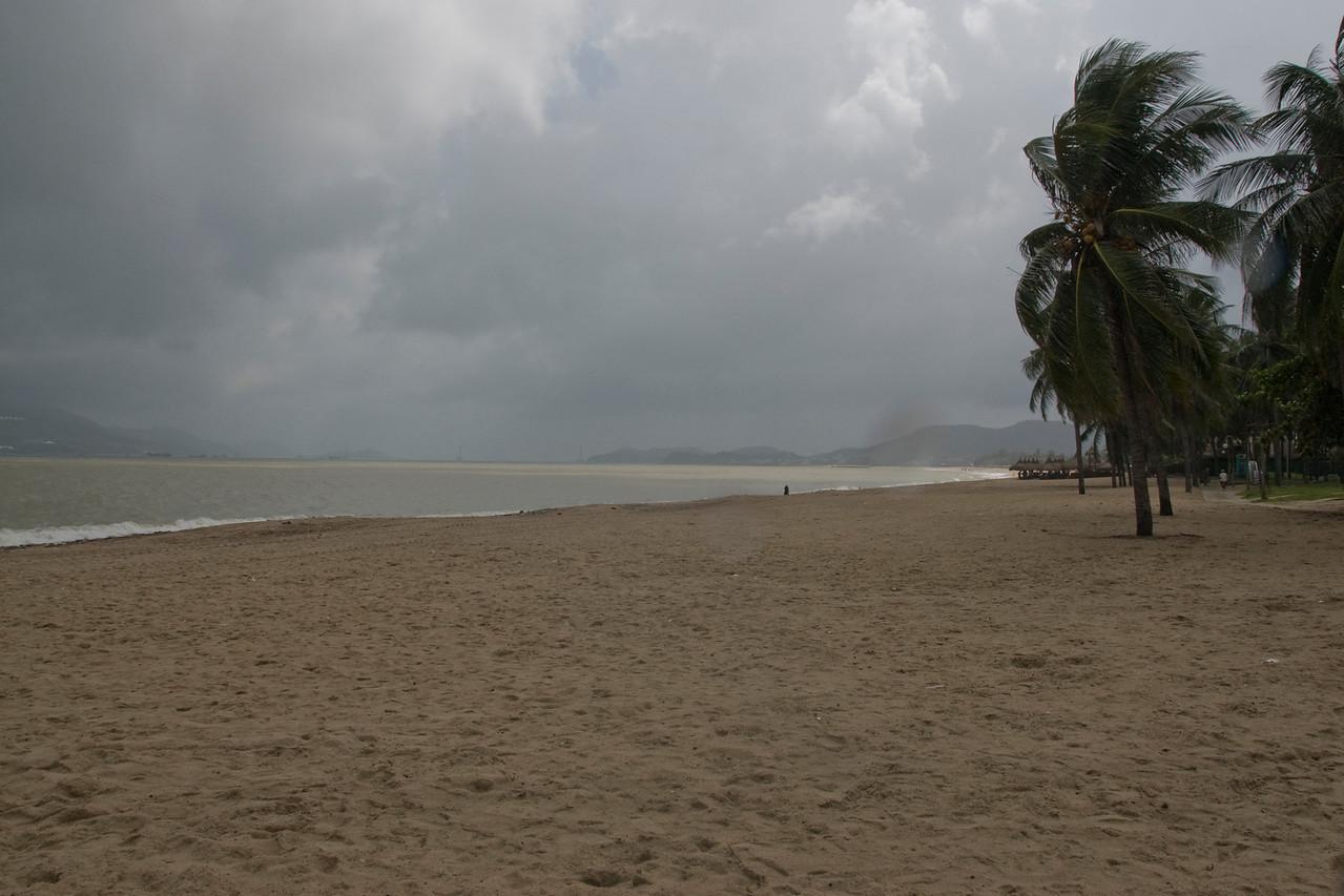 Stormy winds blowing palm trees at Nha Trang, Vietnam