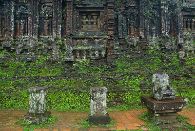 Plants crawling on temple ruins - My Son Sanctuary, Vietnam