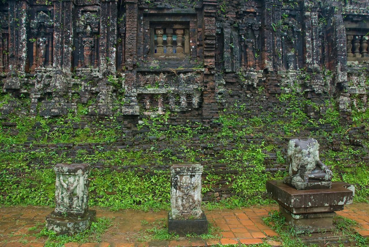 Plants crawling on temple ruins - My Son Sanctuary, Vietnam