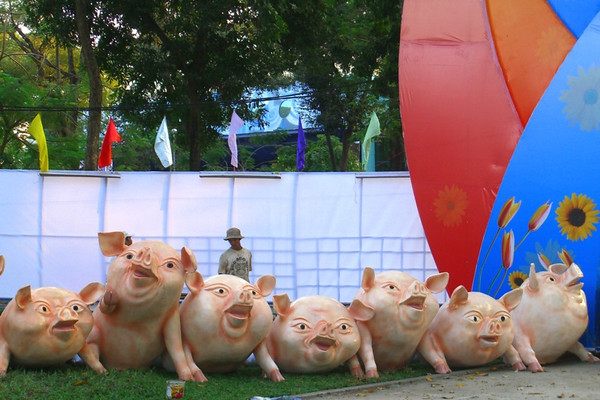 Pig Decors - Ho Chi Minh City, Vietnam