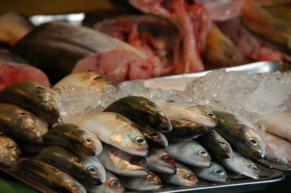 Fish - Ho Chi Minh City, Vietnam
