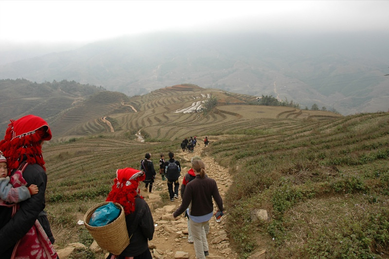 Descending into the Valley - Sapa, Vietnam