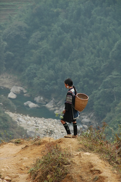 Black Hmong Girl in the Valley - Sapa, Vietnam