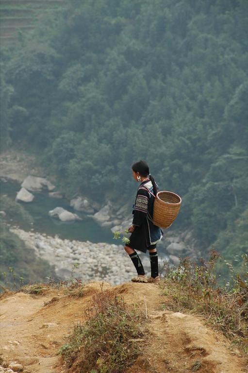 Black Hmong Girl in the Valley - Sapa, Vietnam