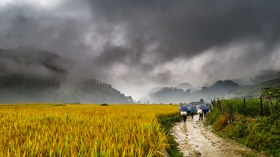 Tough (because of the heavy rain in the morning) but yet stunning trekking in the Sapa Mountains.