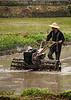 Bonde bak plogen, Halong Road, Vietnan.<br /> *******<br /> Farmer by the plough. Halong Road, Vietnam.<br /> <br /> Specs: Olympus e-500, Zuiko 50-200, f2.8-3.5 (Foto: Geir)