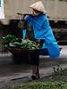 Vietnamesisk idyll forstyrret av moderne ukultur. Ved hovedveien fra Hanoi til Halong City.<br /> *******<br /> Idyllic Vietnam disturbed by modern development. On the main road between Hanoi and Halong City.<br /> <br /> Specs: Olympus E-500, Zuiko 50-200 f2.8-3.5 (Foto: Geir)