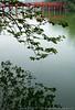 Hoan Quiem Lake - Hanoi