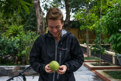 Accidentally picking a fruit in a buddhist temple...