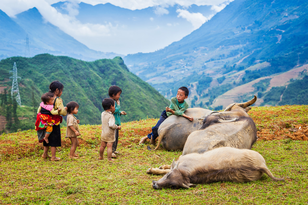 SAPA, VIETNAM - JUNE 10, 2011: Unidentified Vietnamese children with buffaloes in Ta Van village. Though Vietnam's economic growth rate is among the highest in the world, poverty rate is still high