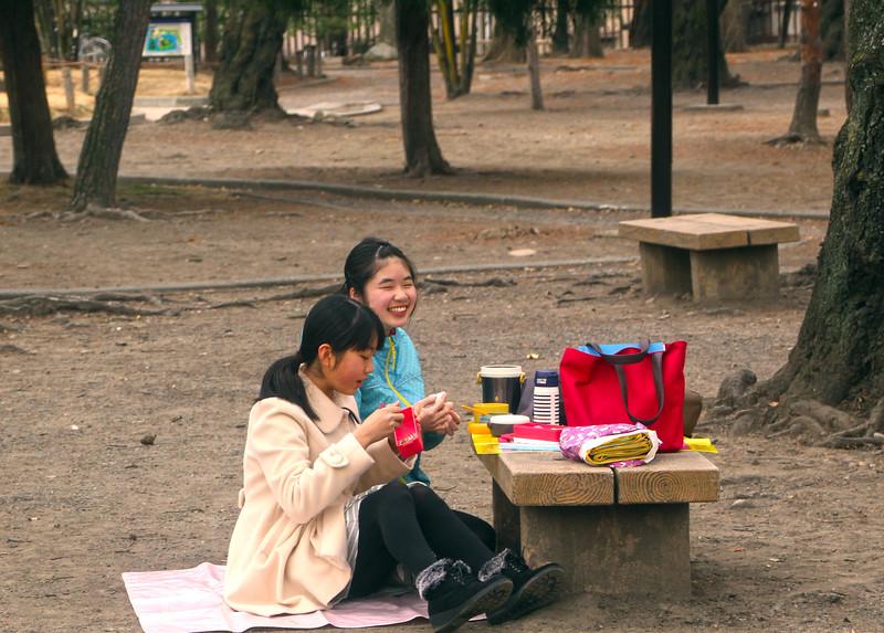 Schoolgirls Enjoying Lunch, Matsumoto Castle Park