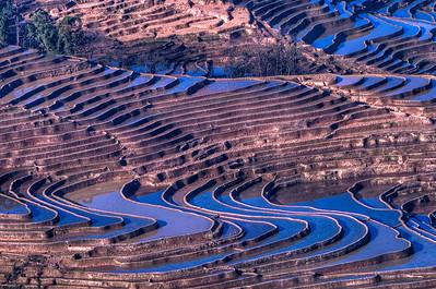 YaunYang, China