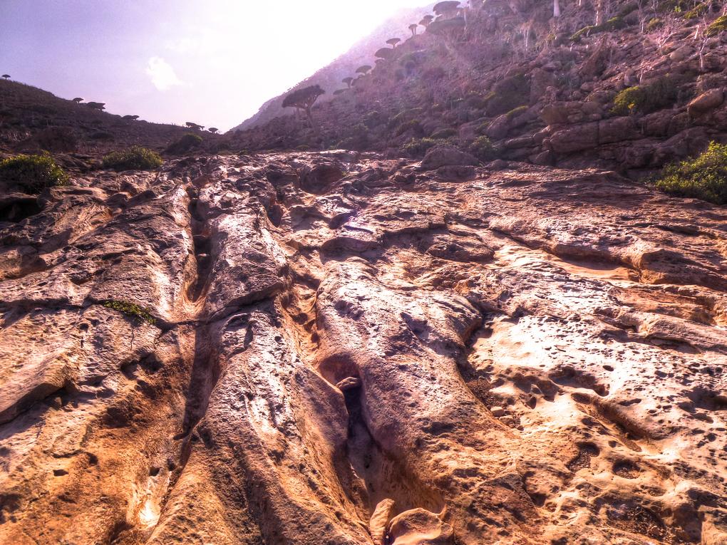 socotra lava flow