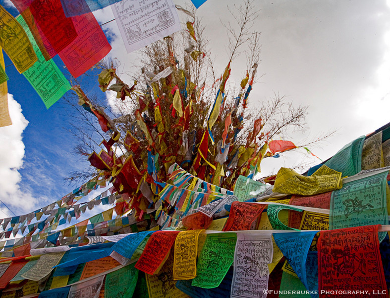 Prayer Flags - Zhongdian