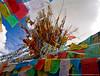 Prayer Flags - Zhongdian
