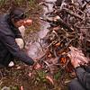 Yn 2619 Sharung Sung La  op Hong Shan