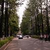 Yn 0003 Kunming